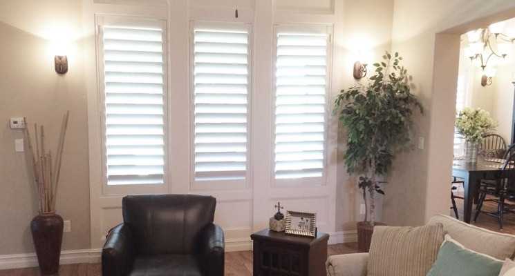 Charlotte parlor white shutters